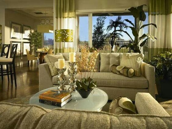 Good Interior Design and Decoration of a Living Room with Plants - Shruti Sodhi Interior Designs
