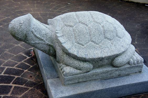 penis turtle at Samcheok Penis Park