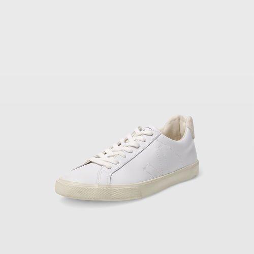 Regularmente Mono variable  Club Monaco Veja Esplar Sneaker | Sneakers, Fair trade shoes, Best sneakers