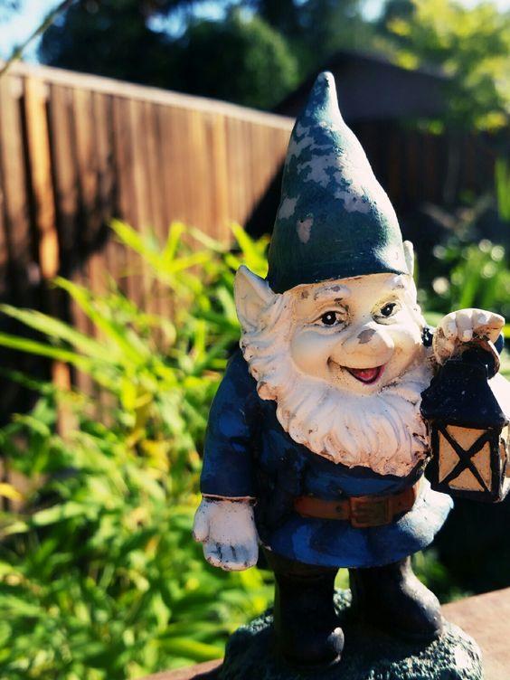 Gnome  Heheh
