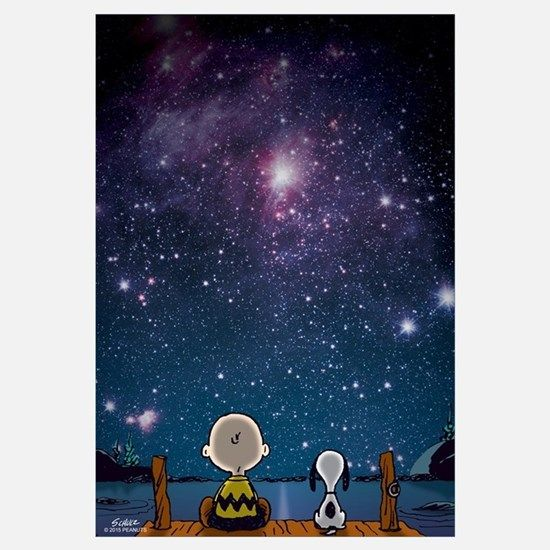 Snoopy And Charlie Brown Spaced Out Wall Art For Poster Wall Art Funny Shower Curtains Wall Art