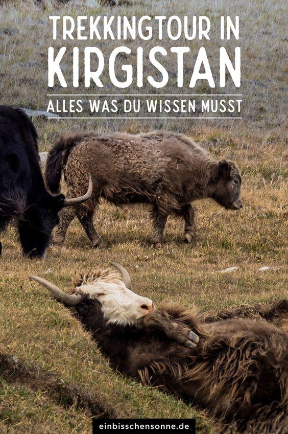 Pinterest Kirgistan Planung
