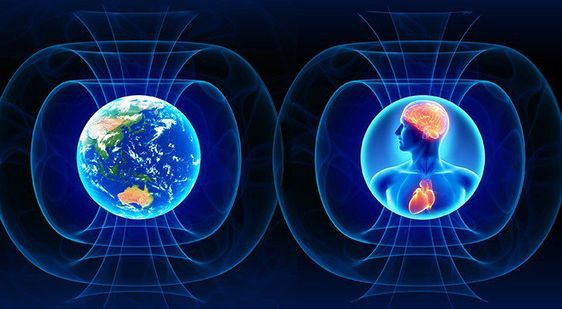 RiseEarth : What Science Is Telling Us About Earth's Electromagnetic Fields & How They Connect To Our Own