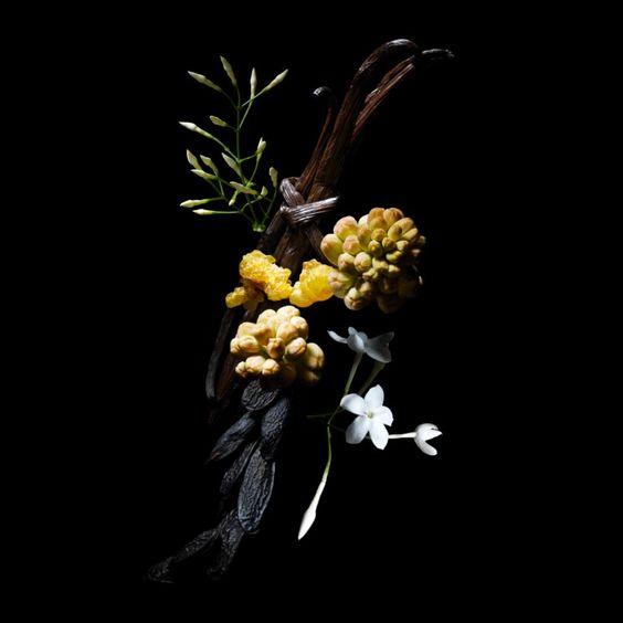 oriental_guerlain_maquiagem_materia_prima_perfume