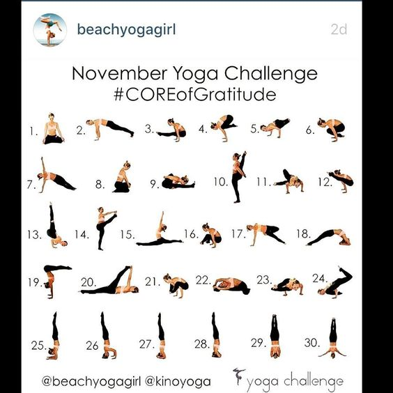 November Yoga Challenge  #COREofgratitude  Hosts: @beachyogagirl @kinoyoga  New Sponsor: @liforme  Another Challenge for Charity  Odanadi  How to participate: 1. Repost this image to your feed 2. Follow @beachyogagirl @kinoyoga @liforme  3. Practice starting November 1st & take a photo of your daily pose ( or your best attempt or modification)  4. Tag daily #COREofgratitude  your hosts and sponsor @liforme  5. Like comment and make new yoga friends  @saraebrandt you said you were in this…