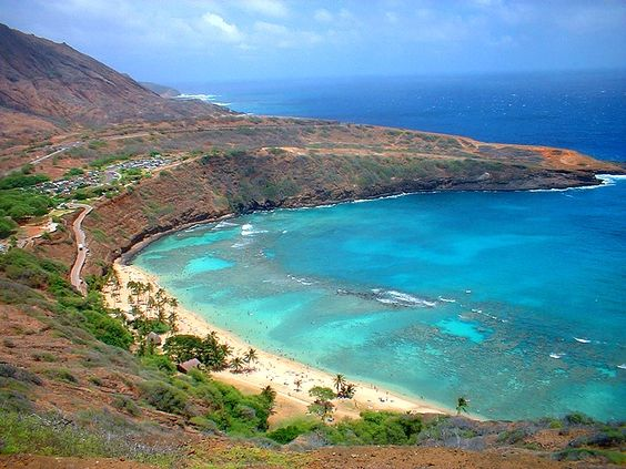 Hanauma Bay, Oahu. This is where we went snorkeling and I practicality swam into a sea turtle. Great day great honeymoon.