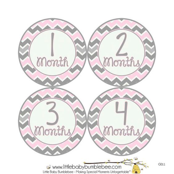 Monthly Baby Stickers Girls Monthly by LittleBabyBumblebee on Etsy, $8.00