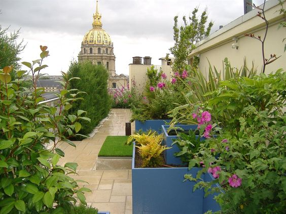 Terrasse avec végétation