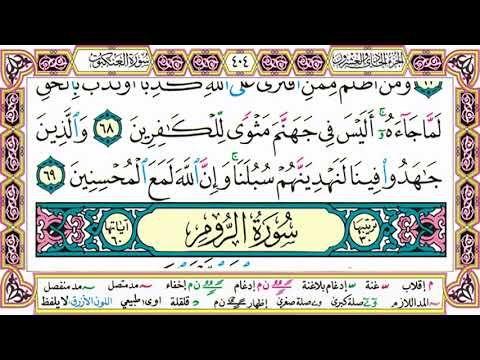 القرآن الكريم مقسم صفحات الشيخ حاتم فريد سورة العنكبوت صفحة 404 مكتوبة مصحف التجويد الملون Calligraphy Arabic Calligraphy