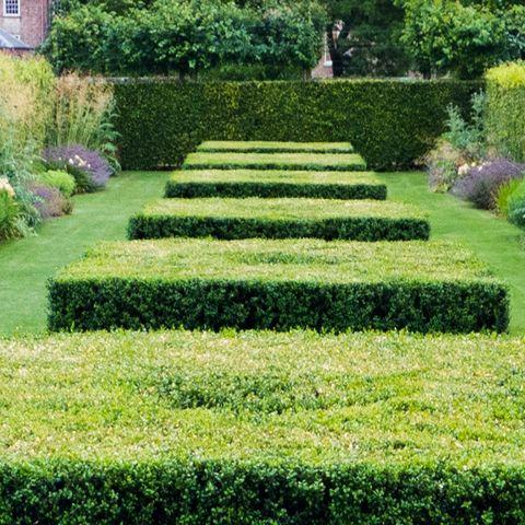 Scampston Hall Piet Oudolf S Garden Design At Scampston Malton North Yorkshire Garden Design Most Beautiful Gardens Garden Design Layout