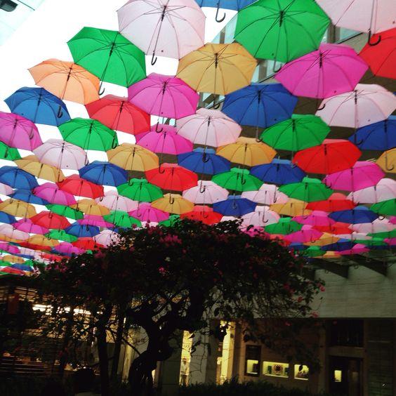 Umbrellas mexico city