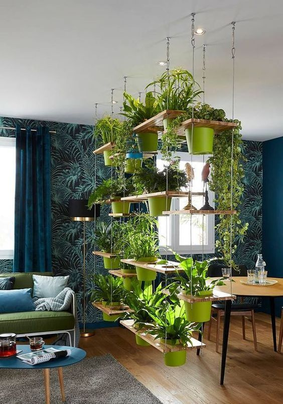 Hanging indoor garden with multiple tiers #gardenIdeas #garden #gardening #plants #homeDecor #indoor #verticalGarden