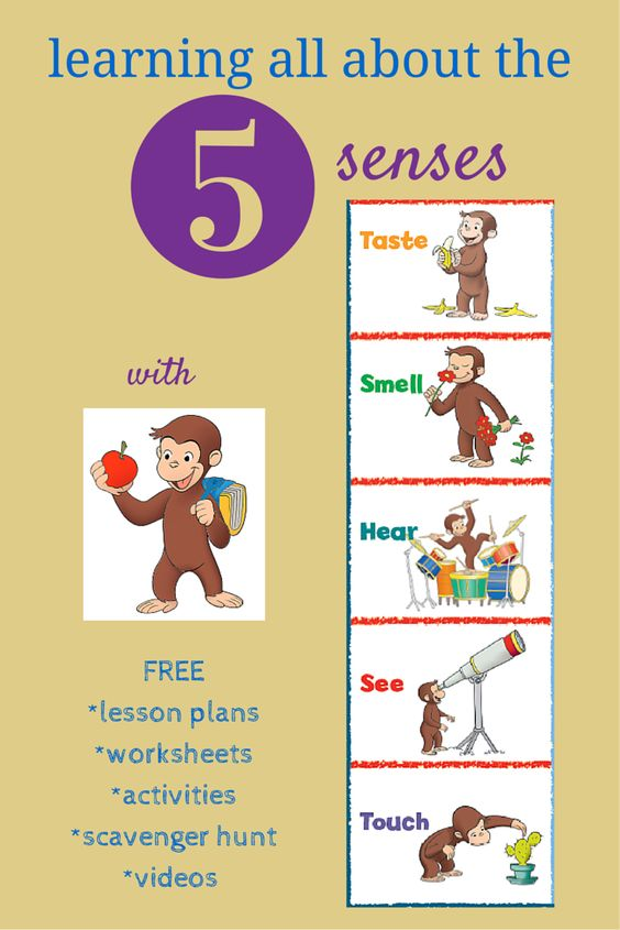 I am using resources from Curious George and PBS to teach my son about the 5 senses and his brother with sensory issues.