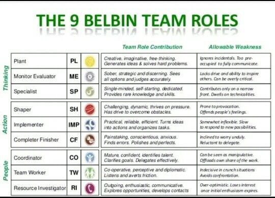 Belbin Team Roles: Theory and Practice