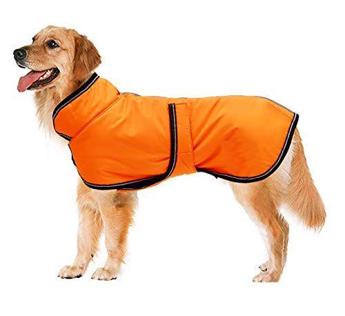 Waterproof Dog Coats, Best Winter Dog Coat Uk