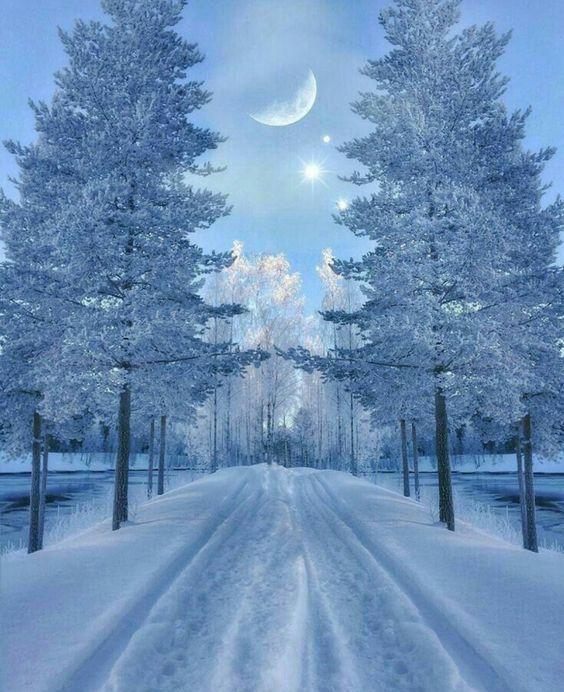 """me-lapislazuli: """"#hiver #neige """""""