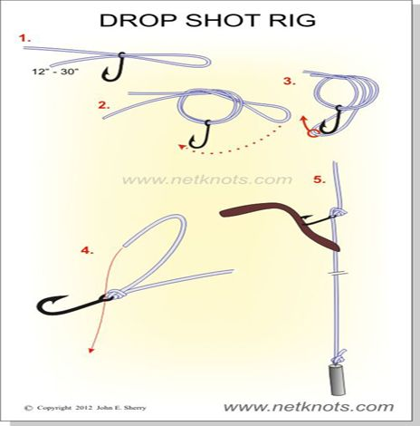 How to tie a Drop Shot Rig