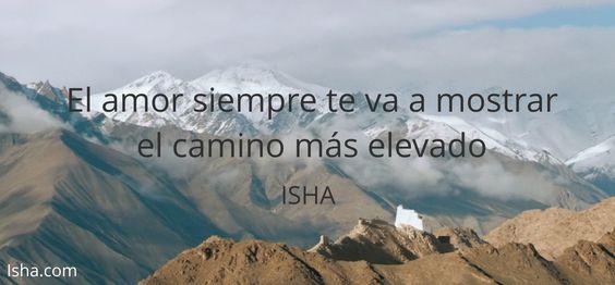 El amor siempre te va a mostrar el camino más elevado. Citas Isha Judd
