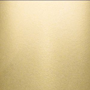 Sherwin Williams Champagne Paint Color