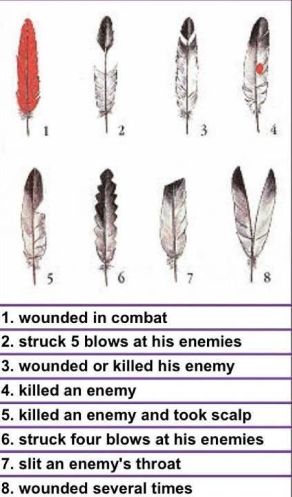Native American Award for Valor, Courage and Bravery  Is there a Native American symbol awarded to great warriors for valor, courage, and bravery in battle much like the Silver or Bronze Stars awarded to soldiers.