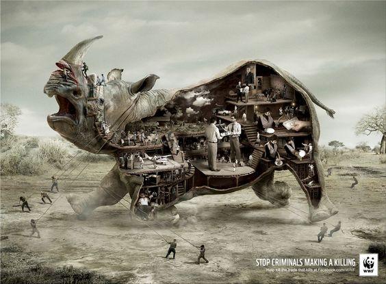 world wildlife fund szukaj w google advertising agency office szukaj google