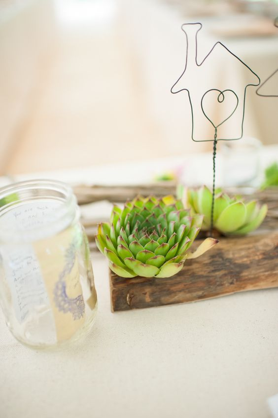 #succulent  Photography: Sea Studio - www.seastudio.us/  Read More: http://www.stylemepretty.com/2014/06/09/diy-wedding-at-treehouse-point/