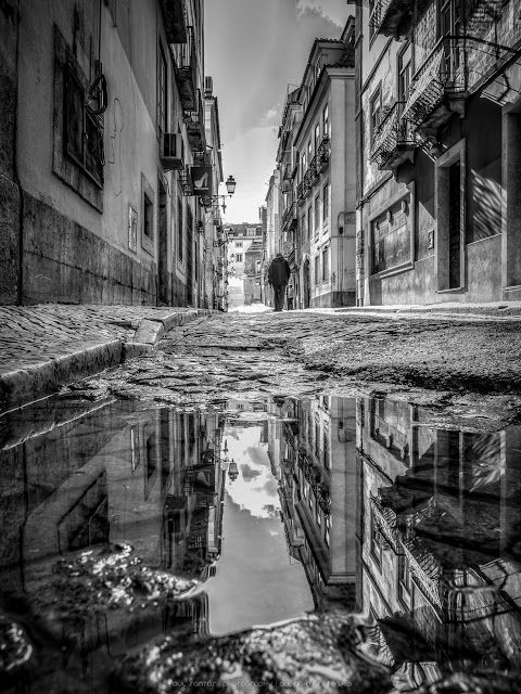 Telas de Lisboa : 12ª TELA Bairro Alto