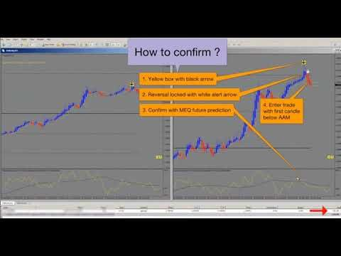 forex auto trader system online trading courses canada