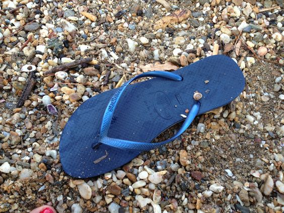 The best for summer Havaianas