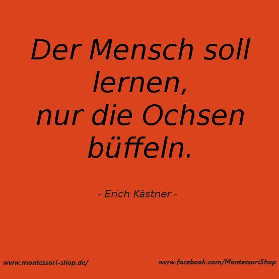 der humor ist der regenschirm der weisen. (erich kästner) | erich ... - Sprüche Von Erich Kästner