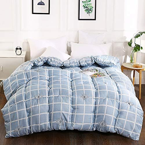 Asdfgh Hypoallergenic Warm Cotton Quilt Quilted Comforter All