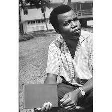In honor of Prof Chinua Achebe. All books collections and photos.