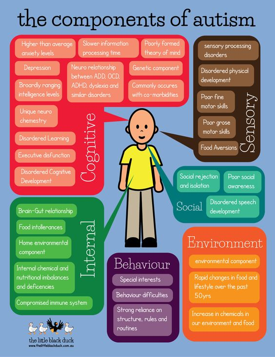 The components of autism - great one pager to use for outsiders, from…
