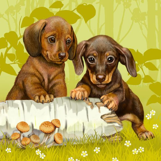 Pin By Belle Amore Dachshunds On Dachshund Traditional Art Dog