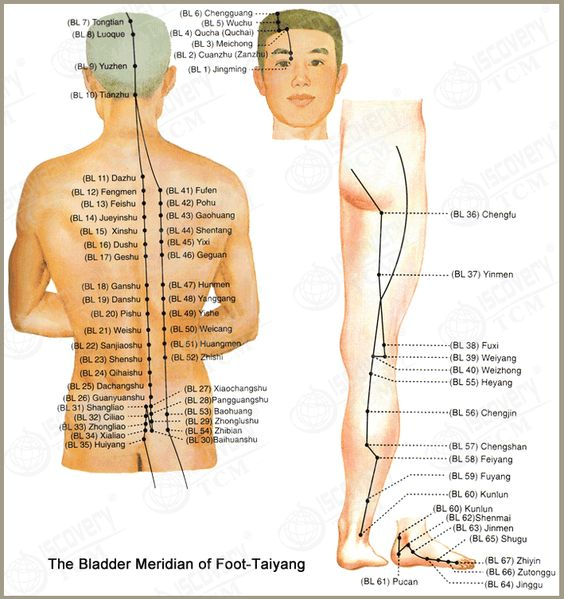 massage acupuncture and individual meridian We provide professional chinese meridian massage, deep tissue massage,  relaxation and sport massage  specific goals for relaxation massage :  improve.