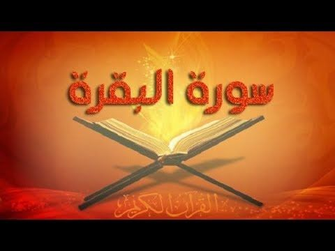 Free Download Cultural Blog شرح قوله تعالى الخبيثات للخبيثين و الزاني لا ين Holy Quran Quran Neon Signs