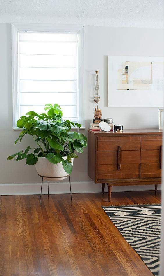 Surprisingly Cute Home Decor 70s