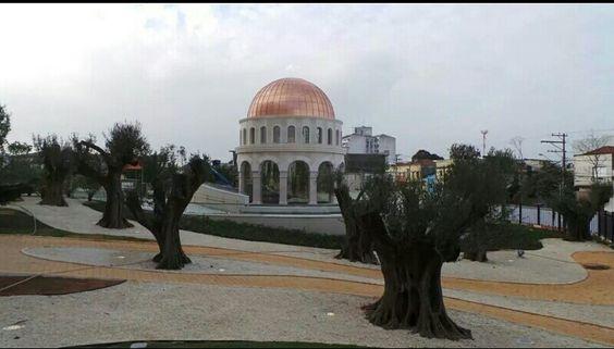 Jardins das oliveiras e cenáculo ao fundo tempoo de Salomão