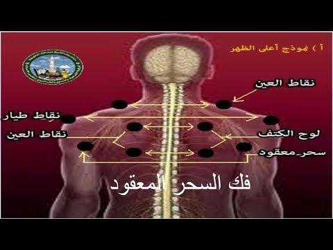 3432 رقية السحر المأكول الموجود في البطن مكرر لمدة ساعتين Roqia Sihr Mange Youtube Islamic Videos Black Magic Youtube