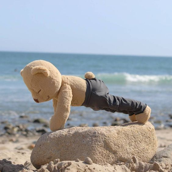 Push-up Teddy