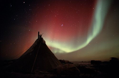 Northern lights, Aurora borealis, over a Nenets reindeer herders camp. Yamal Peninsula, W.Siberia, Russia