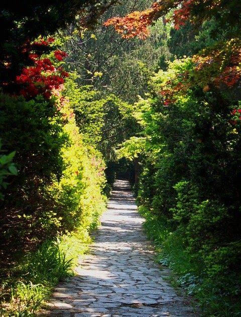 Menakjubkan 30 Pemandangan Taman Bunga Pemandangan Alam Taman Bunga Foto Gratis Di Pixabay Download Gambar Pemandangan Tama Di 2020 Pemandangan Taman Kebun Bunga