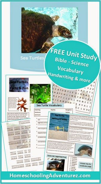 FREE Wildlife Adventures Mini Unit Study