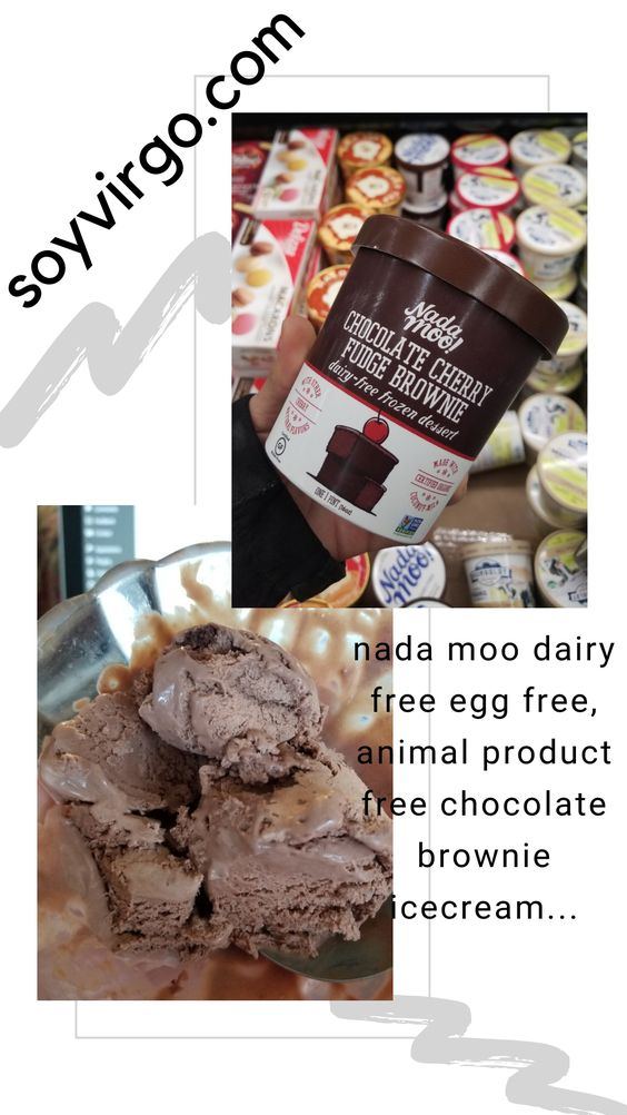 nada moo vegan icecream brownie fudge soyvirgo.com