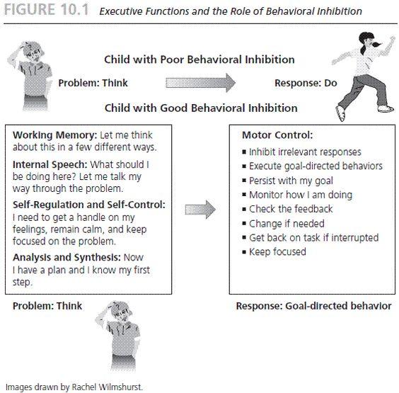 Management Function & Behaviour Essay