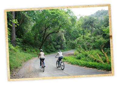 White Sulpher Springs Ride - Velo Vino Winery. St Helena, CA
