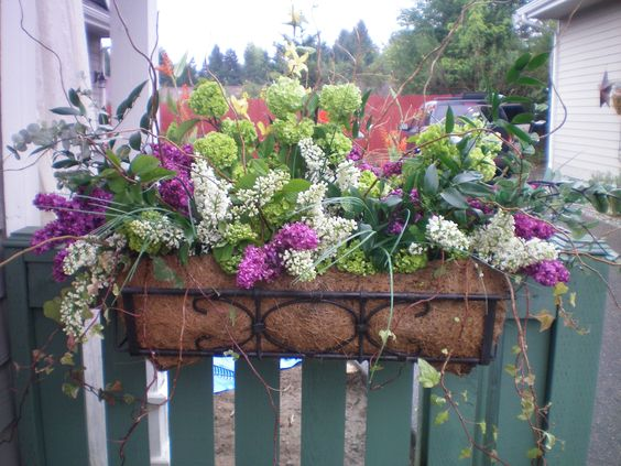 my window box I had for spring