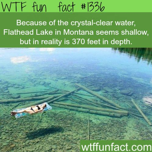 Crystal clear water - Flathead Lake, Montana  MORE OF WTF FACTS are coming HERE  places, movies  and fun facts