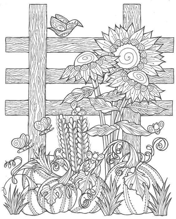 Sunflower Pumpkin Patch Coloring Page Fall Coloring Pages