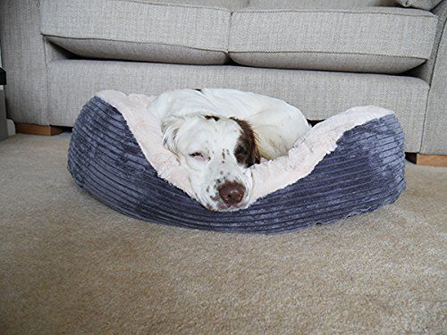 40 Winks Oval Sleepers Grey Jumbo Cord Plush 32 Ped Bed Dog Beds For Small Dogs Dog Bed Plush